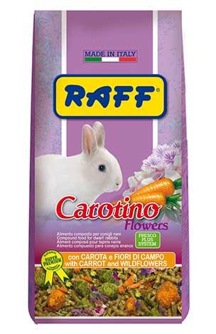 Carotino Flowers