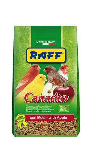 Canarito