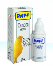 Canora Canto