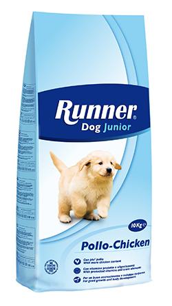 DOG JUNIOR